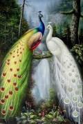 美丽的孔雀油画 KQYH001