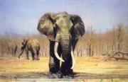 大象油画 动物油画 DXYH001